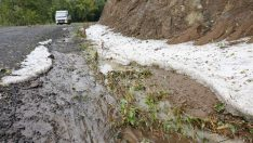 Akkuş'ta Fırtına ve Şiddetli Yağış Maddi Hasara Yol Açtı