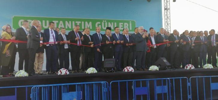 ORDU BURDA İSTANBUL'DA