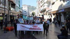 Dünya Diyabet Günü Sağlıklı Yaşam Yürüyüşü Yapıldı