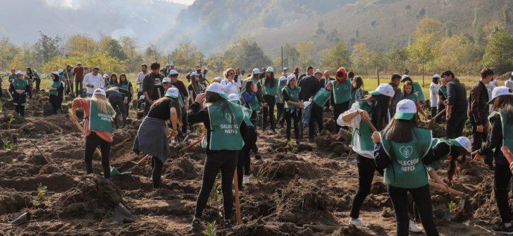11 Milyon Fidan, Toprakla Buluşturuldu