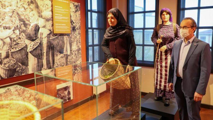 Vali Yavuz, Fındığın Öyküsü Müzesi'nde İncelemelerde Bulundu