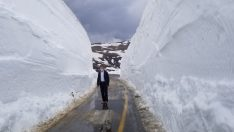 Ordu Çambaşı Yayla Obalarında Kar Mücadelesi