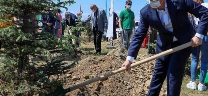 Sağlık Kahramanları Adına Hatıra Ormanı Oluşturuldu