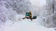 Ordu'da kar yağışı etkili oluyor