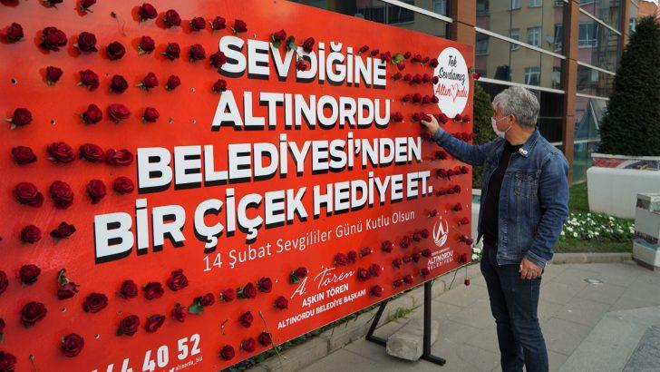 Altınordu belediyesi kırmızı gül dağıttı
