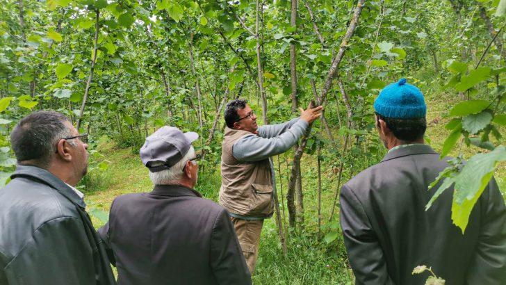 Akkuş'ta Üreticilere Organik Tarım Eğitimi Verildi